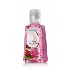 Bath & Body Works Caribbean Escape antibakteriálny gél 29ml